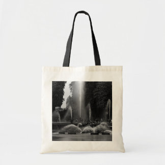 Vintage France Versailles palace neptune fountains Tote Bag