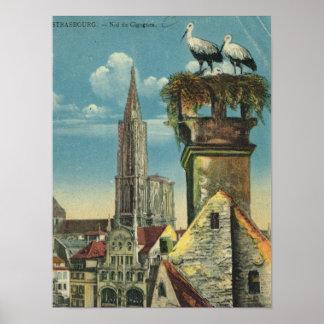 Vintage Francia, Strassburg, jerarquía de la cigüe Impresiones