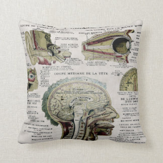 Vintage French Anatomy American MoJo Pillow