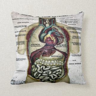 Vintage French Anatomy American MoJo Pillow