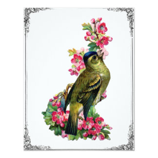 Vintage French Bird & Pink Roses Illustration Custom Announcements