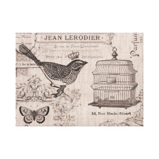 Vintage French Bird stretched canvas