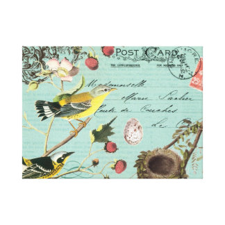 Vintage French Birds stretched canvas