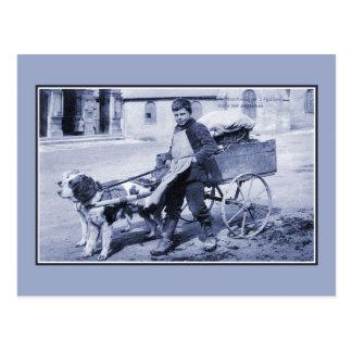 Vintage French boy vegetable seller and dog cart Postcard