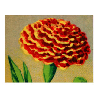 Vintage French Carnation Flower Seed Package Post Card