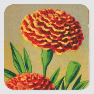 Vintage French Carnation Flower Seed Package Square Sticker