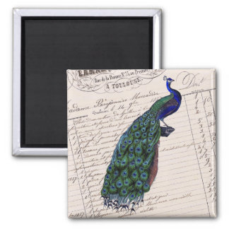 Vintage French Chic Blue Peacock 2 Inch Square Magnet