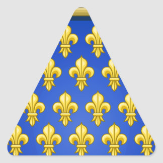 VINTAGE FRENCH COAT OF ARMS TRIANGLE STICKER