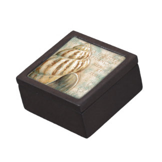 Vintage French Conch Shell Keepsake Box
