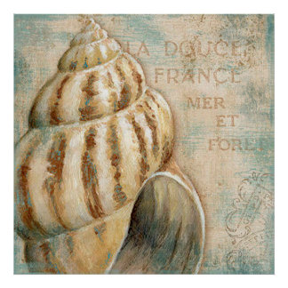 Vintage French Conch Shell Poster