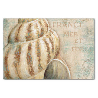 Vintage French Conch Shell Tissue Paper