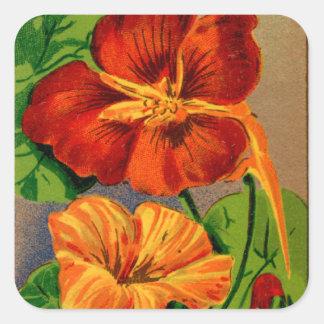 Vintage French Nasturtium Flower Seed Package Stickers