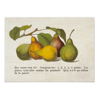 Vintage French Pears Country Kitchen Decor