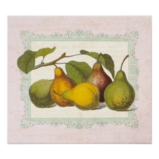 Vintage French Pears Country Kitchen Decor Poster