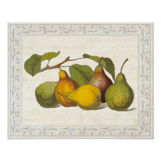 Vintage French Pears Country Kitchen Decor Posters