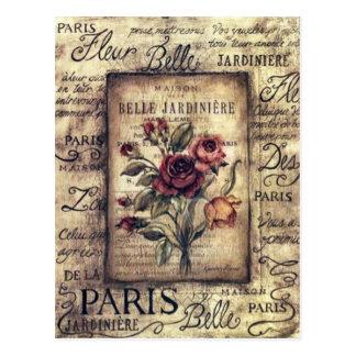 Vintage French Rose Design Postcard