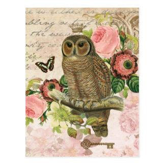 Vintage French shabby chic owl postcard