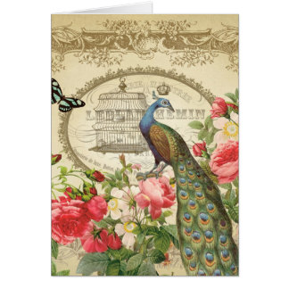 Vintage French Shabby Chic Peacock Card