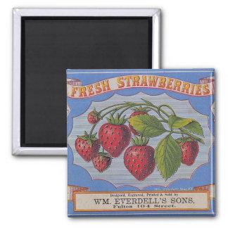 Vintage Fresh Strawberries Magnet