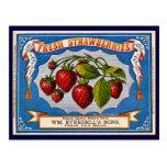 Vintage Fresh Strawberry Ad 1868 Postcard