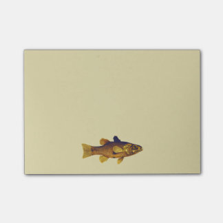 Vintage Freshwater Fish Ilustration Post-it Notes