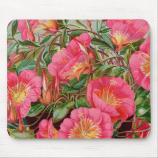Vintage Fruit and Floral Seed Catalog Gifts Mouse Pad