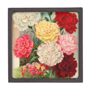 Vintage Fruit and Floral Seed Catalog Gifts Premium Gift Box