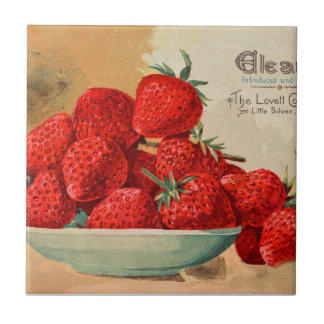 Vintage Fruit and Floral Seed Catalog Gifts Small Square Tile