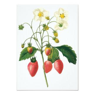 Vintage Fruit Berries Food Strawberries by Redoute Card