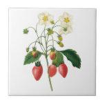 Vintage Fruit Berries Food Strawberries by Redoute Ceramic Tile