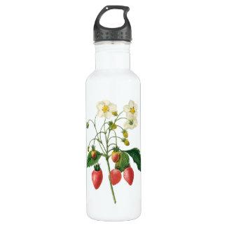 Vintage Fruit Berries Food Strawberries by Redoute Water Bottle