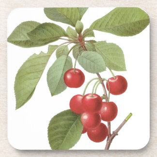 Vintage Fruit Cherry Food, Cherries by Redoute Coaster