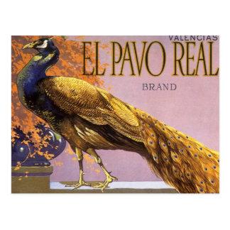 Vintage Fruit Crate Label Art El Pavo Peacock Bird Postcard