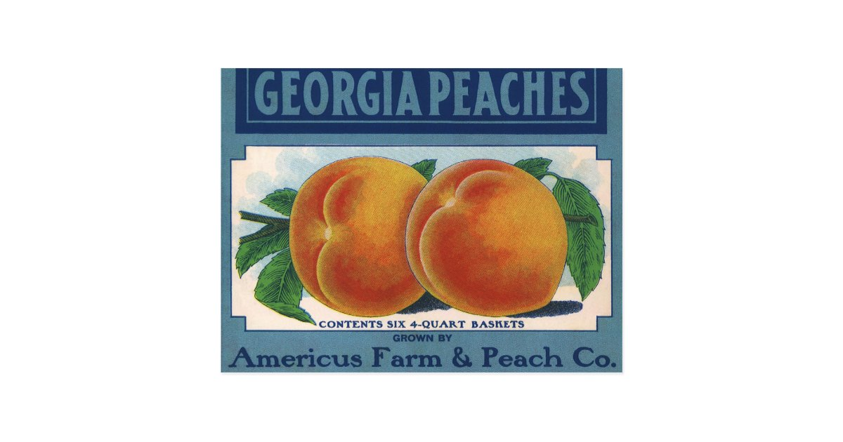 Vintage Fruit Crate Label Art Georgia Peaches Postcard