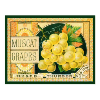 Vintage Fruit Crate Label Art, Muscat Grapes Postcard