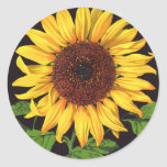 Vintage Fruit Crate Label Art Orangedale Sunflower Round Stickers