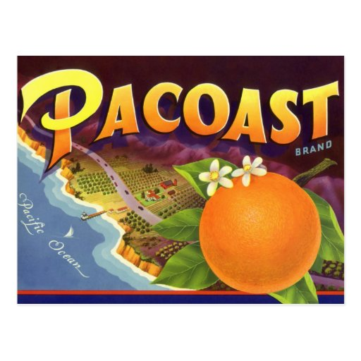 Vintage Fruit Crate Label Art, Pacoast Oranges Postcard