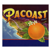 Vintage Fruit Crate Label Art, Pacoast Oranges Poster