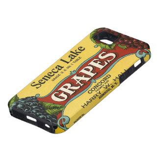 Vintage Fruit Crate Label Art, Seneca Lake Grapes iPhone 5 Covers