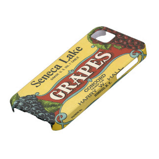 Vintage Fruit Crate Label Art, Seneca Lake Grapes iPhone SE/5/5s Case