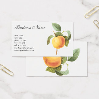 Vintage Fruit Food, Calville Apple by Redoute Business Card