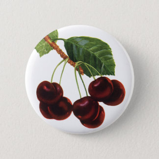 Vintage Fruit Foods, Ripe Cherries from a Tree Pinback Button