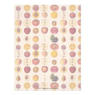 Vintage Fruit Pattern Letterhead