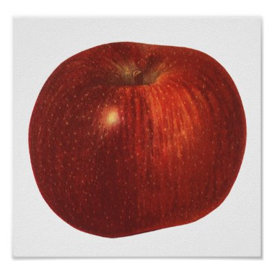 Vintage Fruit; Ripe Red Delicious Apple Posters