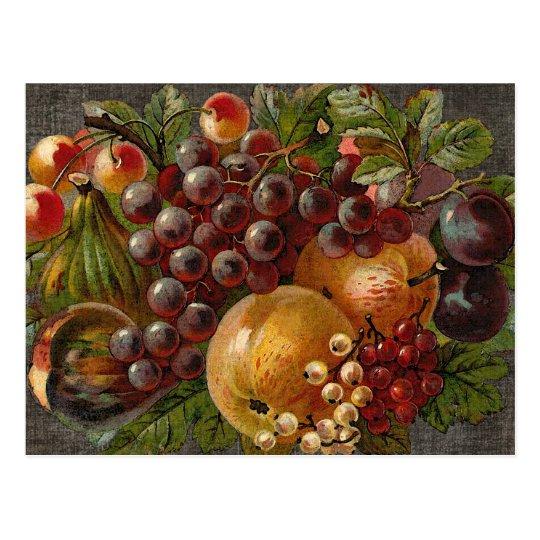 Vintage Fruits Harvest Thanksgiving Postcard