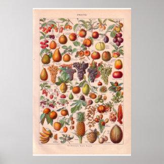 Vintage fruits poster 1920