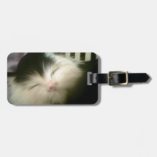 Vintage Fur Black White Kitten Luggage Tag