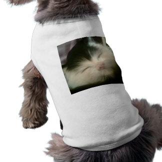 Vintage Fur Black White Kitten Retro Kitty Cat Art Shirt