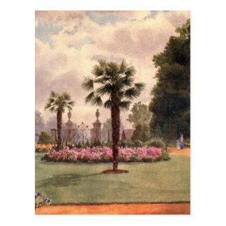 Vintage Garden Art - Martin, Thomas Mower Postcard