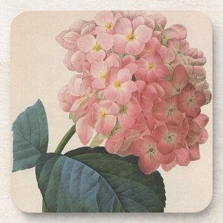 Vintage Garden Flowers, Pink Hydrangea Hortensia Beverage Coaster